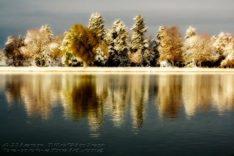 Snow in Autumn Colorado