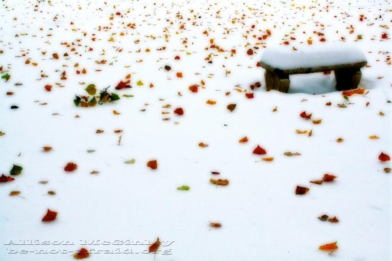 Denver Snow in October